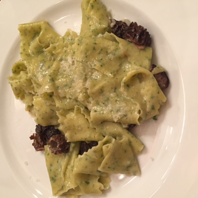 Mint and Morels